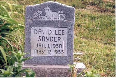 SNYDER, DAVID LEE - Ross County, Ohio | DAVID LEE SNYDER - Ohio Gravestone Photos
