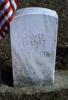 TERNEY, JAMES - Ross County, Ohio | JAMES TERNEY - Ohio Gravestone Photos