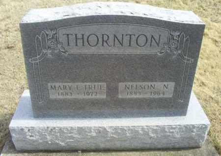 THORNTON, NELSON N. - Ross County, Ohio | NELSON N. THORNTON - Ohio Gravestone Photos