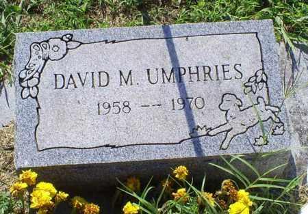 UMPHRIES, DAVID M. - Ross County, Ohio   DAVID M. UMPHRIES - Ohio Gravestone Photos