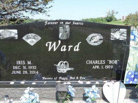 WARD, CHARLES - Ross County, Ohio | CHARLES WARD - Ohio Gravestone Photos