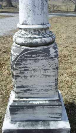 WATSON, SARAH E. - Ross County, Ohio | SARAH E. WATSON - Ohio Gravestone Photos
