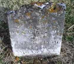 WHITSEL, LAURA ANN - Ross County, Ohio   LAURA ANN WHITSEL - Ohio Gravestone Photos