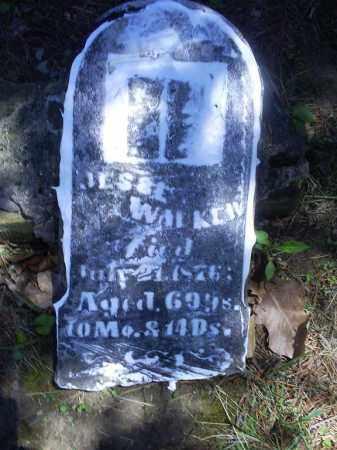 WILKIN, JESSE - Ross County, Ohio | JESSE WILKIN - Ohio Gravestone Photos