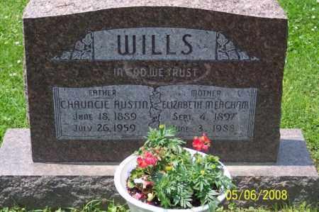 MEACHAM WILLS, ELIZABETH - Ross County, Ohio | ELIZABETH MEACHAM WILLS - Ohio Gravestone Photos