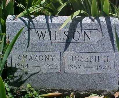 LYNCH WILSON, AMAZONY - Ross County, Ohio   AMAZONY LYNCH WILSON - Ohio Gravestone Photos