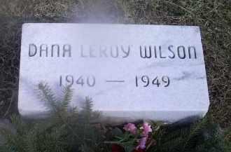 WILSON, DANA LEROY - Ross County, Ohio   DANA LEROY WILSON - Ohio Gravestone Photos
