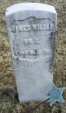 WILSON, JAMES - Ross County, Ohio | JAMES WILSON - Ohio Gravestone Photos