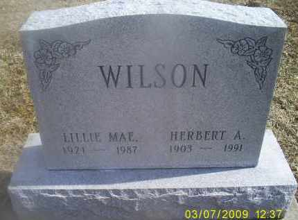 WILSON, HERBERT A. - Ross County, Ohio | HERBERT A. WILSON - Ohio Gravestone Photos