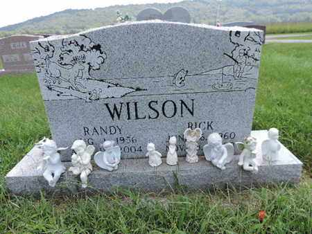 WILSON, RICK - Ross County, Ohio | RICK WILSON - Ohio Gravestone Photos