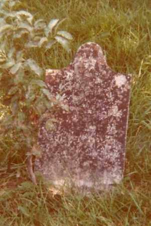 WORTHINGTON, ANN E. E. - Ross County, Ohio | ANN E. E. WORTHINGTON - Ohio Gravestone Photos
