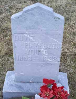 PINKERTON YOUNG, DOVIE - Ross County, Ohio | DOVIE PINKERTON YOUNG - Ohio Gravestone Photos