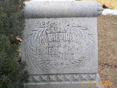 SCHWAN DROWN, CATHERINE L - Sandusky County, Ohio   CATHERINE L SCHWAN DROWN - Ohio Gravestone Photos