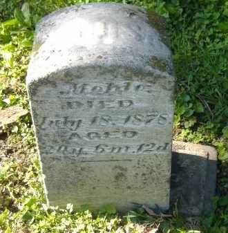 MEHLE, LOUISA - Sandusky County, Ohio   LOUISA MEHLE - Ohio Gravestone Photos