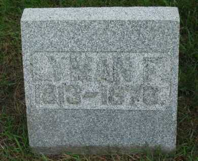 MILLER, LYMAN F. - Sandusky County, Ohio   LYMAN F. MILLER - Ohio Gravestone Photos