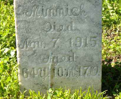 MINNICK, CAROLINE - Sandusky County, Ohio | CAROLINE MINNICK - Ohio Gravestone Photos