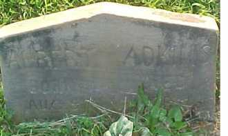 ADKINS, ALBERT - Scioto County, Ohio | ALBERT ADKINS - Ohio Gravestone Photos