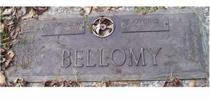 BELLOMY, JOYCE E. - Scioto County, Ohio | JOYCE E. BELLOMY - Ohio Gravestone Photos