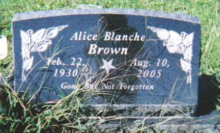 BROWN, ALICE BLANCHE - Scioto County, Ohio | ALICE BLANCHE BROWN - Ohio Gravestone Photos