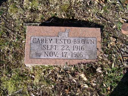 BROWN, CAREY ESTO - Scioto County, Ohio   CAREY ESTO BROWN - Ohio Gravestone Photos