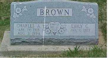 BROWN, CHARLES A. - Scioto County, Ohio   CHARLES A. BROWN - Ohio Gravestone Photos