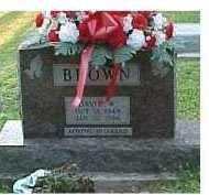 BROWN, DAVID - Scioto County, Ohio | DAVID BROWN - Ohio Gravestone Photos