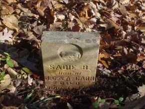 CARR, SADIE B. - Scioto County, Ohio   SADIE B. CARR - Ohio Gravestone Photos