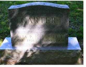 CARTER, ALTA P. - Scioto County, Ohio | ALTA P. CARTER - Ohio Gravestone Photos