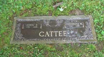 CATTEE, JOHN P. - Scioto County, Ohio | JOHN P. CATTEE - Ohio Gravestone Photos