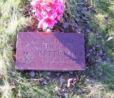 DETTWILLER, JOSHUA B. - Scioto County, Ohio   JOSHUA B. DETTWILLER - Ohio Gravestone Photos
