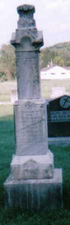 FEIKE DETTWILLER, JOHANNA - Scioto County, Ohio | JOHANNA FEIKE DETTWILLER - Ohio Gravestone Photos