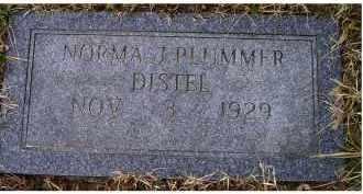 PLUMMER DISTEL, NORMA J. - Scioto County, Ohio | NORMA J. PLUMMER DISTEL - Ohio Gravestone Photos