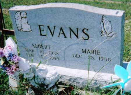 EVANS, ALBERT - Scioto County, Ohio | ALBERT EVANS - Ohio Gravestone Photos