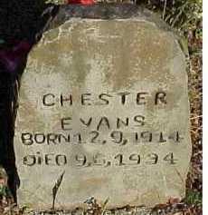 EVANS, CHESTER - Scioto County, Ohio | CHESTER EVANS - Ohio Gravestone Photos