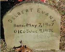 EVANS, DELBERT - Scioto County, Ohio | DELBERT EVANS - Ohio Gravestone Photos