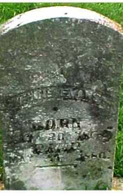 EVANS, EVELINE - Scioto County, Ohio   EVELINE EVANS - Ohio Gravestone Photos