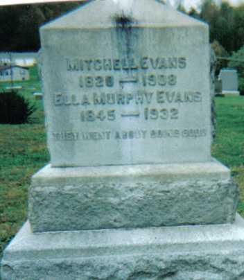 MURPHY EVANS, ELLA - Scioto County, Ohio | ELLA MURPHY EVANS - Ohio Gravestone Photos