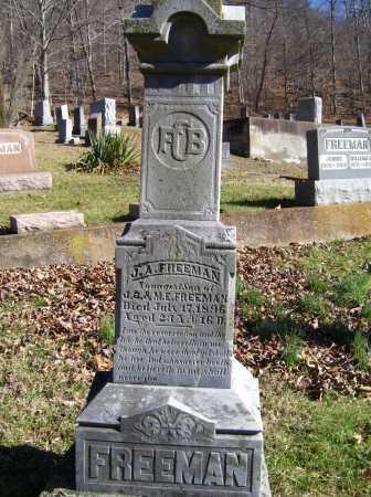 FREEMAN, J. A. - Scioto County, Ohio | J. A. FREEMAN - Ohio Gravestone Photos