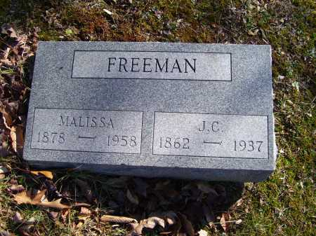 FREEMAN, MALISSA - Scioto County, Ohio | MALISSA FREEMAN - Ohio Gravestone Photos