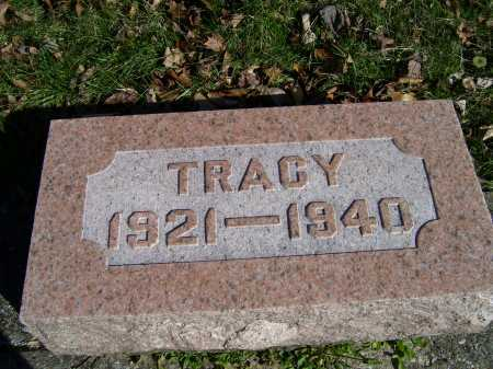FREEMAN, TRACY - Scioto County, Ohio | TRACY FREEMAN - Ohio Gravestone Photos