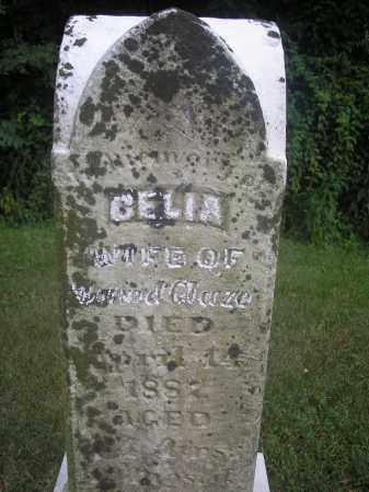 GLAZE, CELIA - Scioto County, Ohio | CELIA GLAZE - Ohio Gravestone Photos