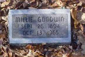 GOODWIN, MILLIE - Scioto County, Ohio   MILLIE GOODWIN - Ohio Gravestone Photos