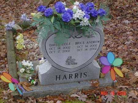 HARRIS, BRICE ANDREW - Scioto County, Ohio | BRICE ANDREW HARRIS - Ohio Gravestone Photos