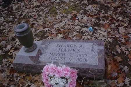 HAWKS, SHARON A. - Scioto County, Ohio | SHARON A. HAWKS - Ohio Gravestone Photos