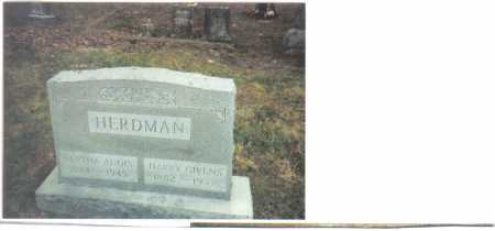 HERDMAN, BERTHA ADDIS - Scioto County, Ohio | BERTHA ADDIS HERDMAN - Ohio Gravestone Photos