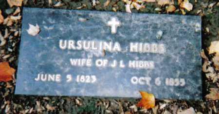 HIBBS, URSULINA - Scioto County, Ohio | URSULINA HIBBS - Ohio Gravestone Photos