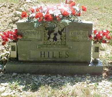 HILES, CATHERINE - Scioto County, Ohio | CATHERINE HILES - Ohio Gravestone Photos