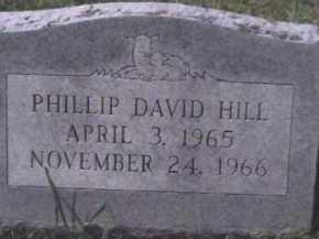 HILL, PHILLIP DAVID - Scioto County, Ohio | PHILLIP DAVID HILL - Ohio Gravestone Photos