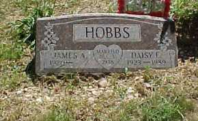 HOBBS, DAISY F. - Scioto County, Ohio | DAISY F. HOBBS - Ohio Gravestone Photos