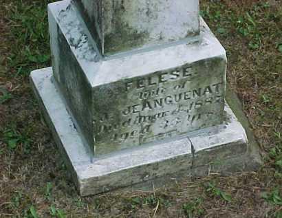 JEANGUENAT, FELESE - Scioto County, Ohio | FELESE JEANGUENAT - Ohio Gravestone Photos